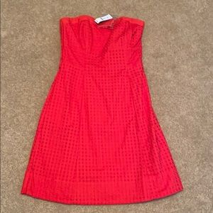 NWT WHBM eyelet strapless dress